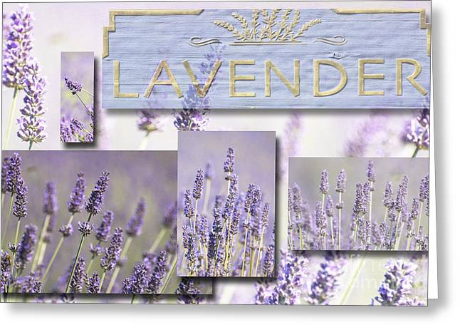 Waterscape Mixed Media Greeting Cards - Lavender Fields Purple Pink Collage Greeting Card by Anahi DeCanio - ArtyZen Studios