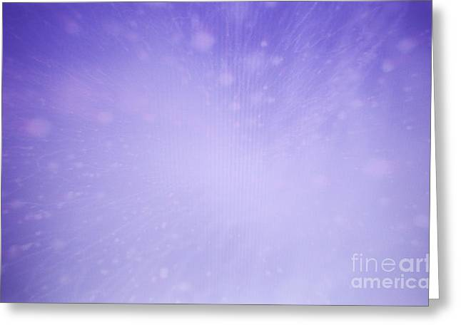 Lavender Love Greeting Card by Nasser Studios
