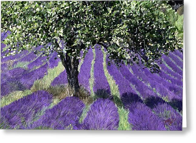 Mountain Valley Greeting Cards - Lavender Pathways Greeting Card by James Shepherd