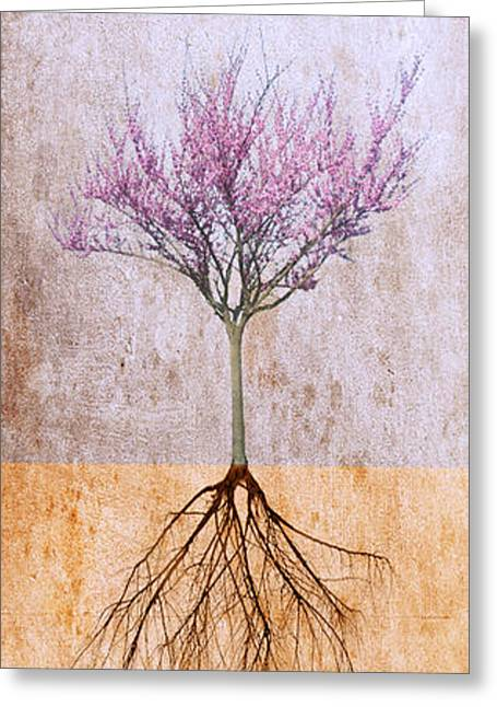 Roots And Wings Greeting Cards - Lavender Redbud and Birds Greeting Card by Marc Ward Photography