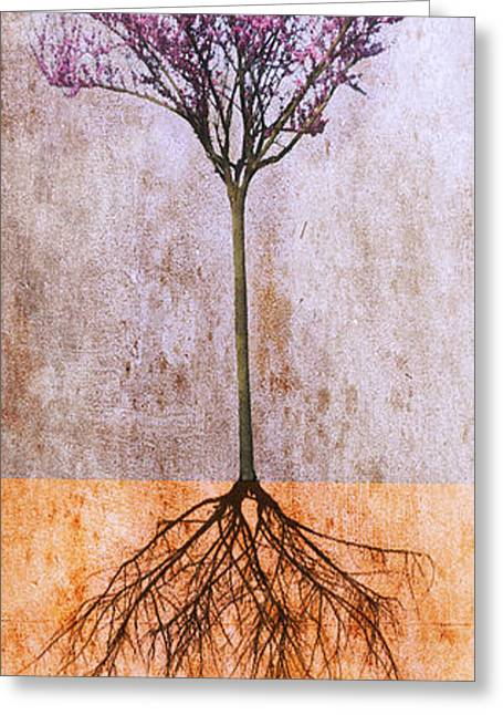 Roots And Wings Greeting Cards - Lavender Redbud Greeting Card by Marc Ward Photography