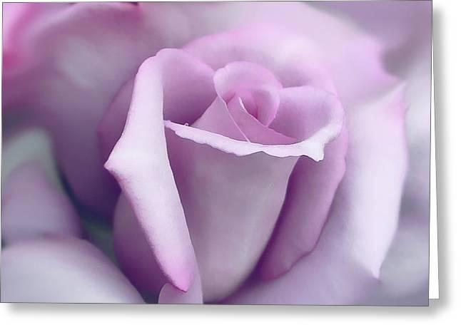 Lavender Rose Flower Portrait Greeting Card by Jennie Marie Schell