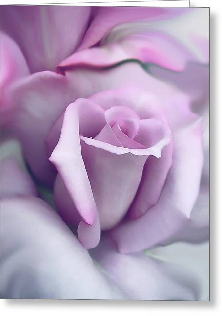 Purples Greeting Cards - Lavender Rose Flower Portrait Greeting Card by Jennie Marie Schell