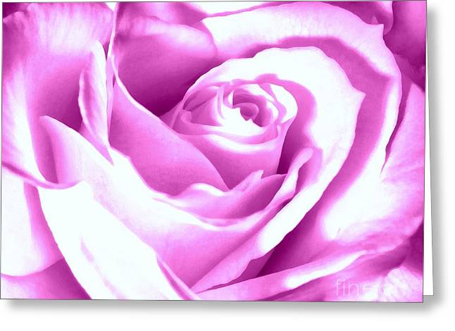 Fushia Greeting Cards - Lavender Rose  Greeting Card by Janine Riley