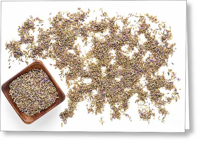 Dried Flower Greeting Cards - Lavender Seeds Greeting Card by Olivier Le Queinec