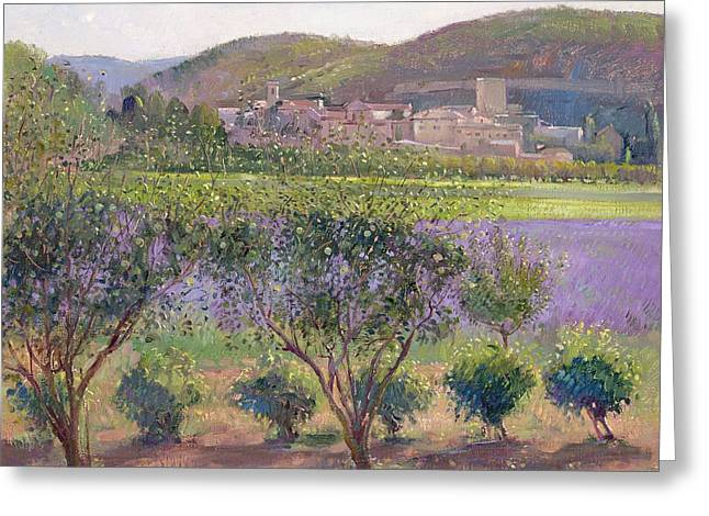 Signature Greeting Cards - Lavender Seen Through Quince Trees Greeting Card by Timothy  Easton