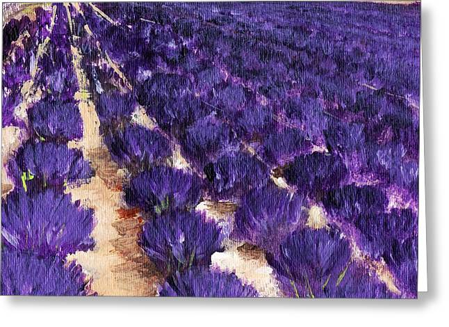 Summer Scene Drawings Greeting Cards - Lavender Study - Marignac-en-Diois Greeting Card by Anastasiya Malakhova