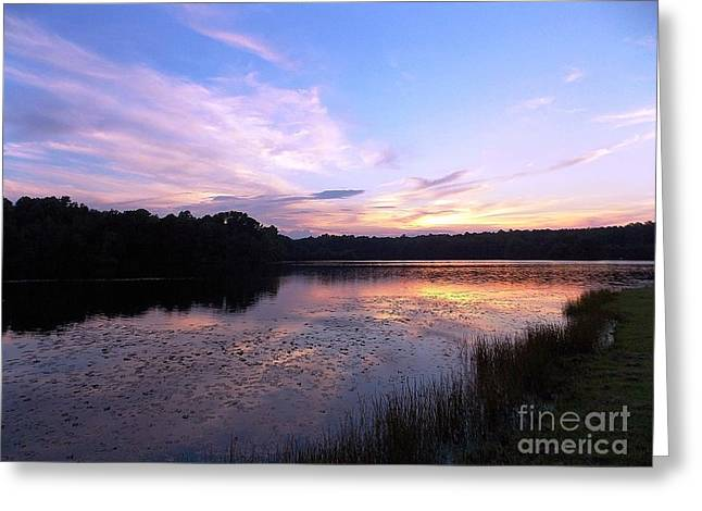 Animals Love Greeting Cards - Lavender Sunset Greeting Card by Matthew Seufer