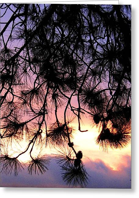 Lavender Sunset Painting Greeting Card by Will Borden