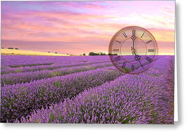 Hitchin Greeting Cards - Lavender Time Greeting Card by Gill Billington