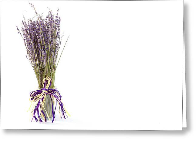 Lavandula Greeting Cards - Lavender Greeting Card by Tom Gowanlock