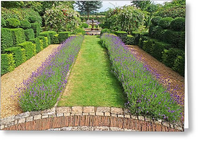 Garden Scene Greeting Cards - Lavender Walk Greeting Card by Gill Billington