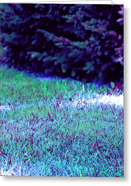Pine Needles Mixed Media Greeting Cards - Lawn blue Greeting Card by First Star Art