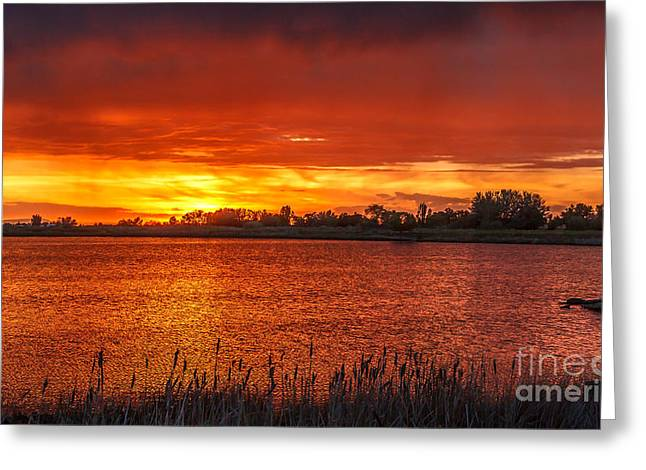 Bale Greeting Cards - Layered Sunset Greeting Card by Robert Bales