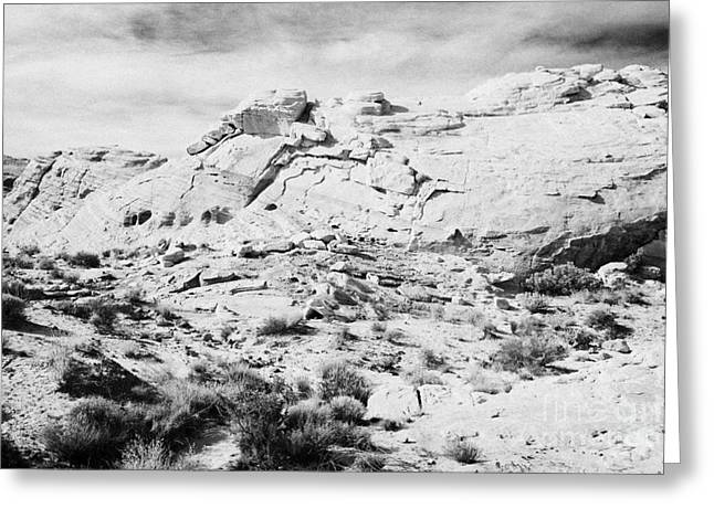 Layered Rock Greeting Cards - Layers Of Different Coloured Sandstone Rock Strata In Valley Of Fire State Park Nevada Usa Greeting Card by Joe Fox