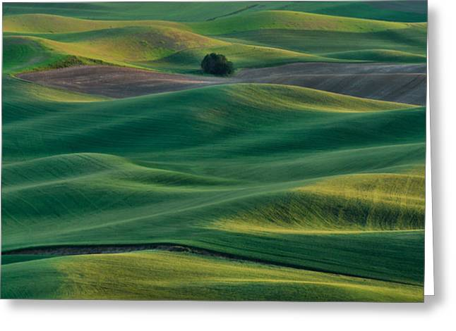 Pastureland Greeting Cards - Layers of Light Greeting Card by Don Schwartz