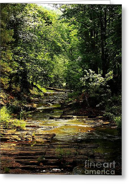 Beavers Bend Park Greeting Cards - Layers of Time Greeting Card by Lisa Holmgreen