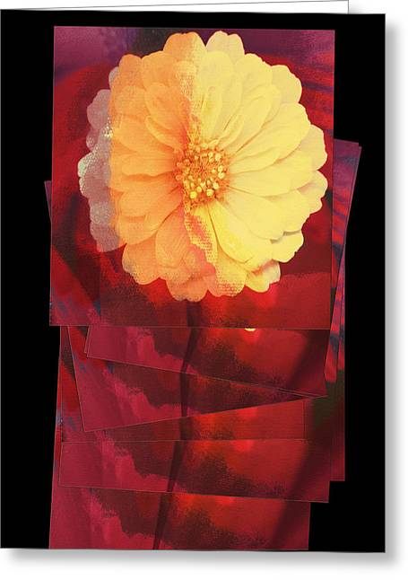 Layers Of Yellow Flower Greeting Card by Susan Stone