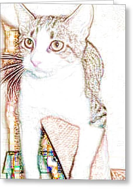 Photos Of Cats Greeting Cards - Layla Greeting Card by Deborah Bagoy