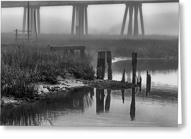 Fishing Creek Greeting Cards - Lazaretto Creek Pilings Greeting Card by Renee Sullivan