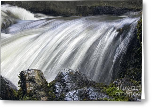 Lazerne Falls Cascade Greeting Card by Darleen Stry