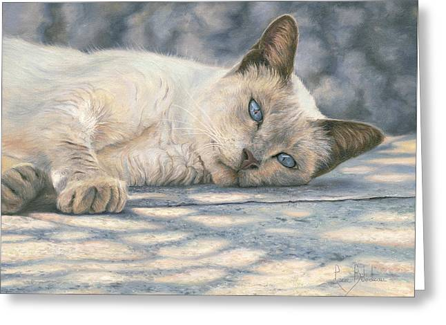 Domestic Cat Greeting Cards - Lazy Afternoon Greeting Card by Lucie Bilodeau