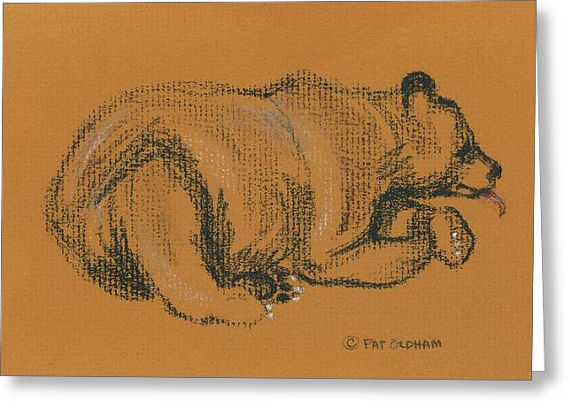 Mammals Jewelry Greeting Cards - Lazy Black bear Greeting Card by Pat Oldham