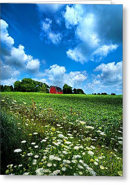 Red Barn Greeting Cards - Lazy Days of Summer Greeting Card by Phil Koch