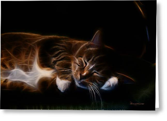 Tiger Fractal Greeting Cards - Lazy Kitty Greeting Card by EricaMaxine  Price
