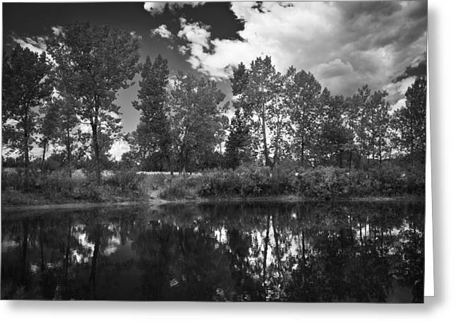 Field. Cloud Mixed Media Greeting Cards - Lazy Summer Day BW Greeting Card by Angelina Vick