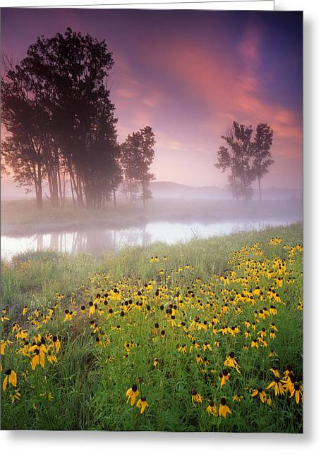 Lazy Susanne Sunrise Greeting Card by Ray Mathis