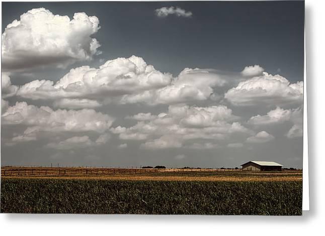 Lyndon Greeting Cards - LBJ Ranch in Texas Greeting Card by Joan Carroll
