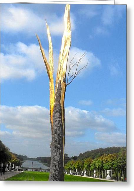Le Arbre Greeting Card by William Lanza