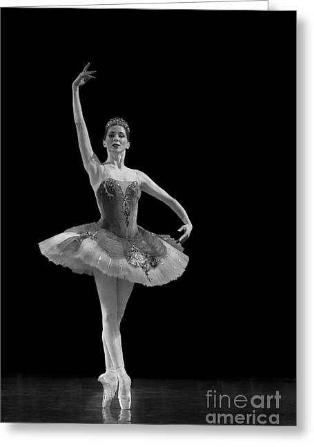 Young St. Clare Greeting Cards - Le Corsaire - Pas de Deux. Greeting Card by Clare Bambers