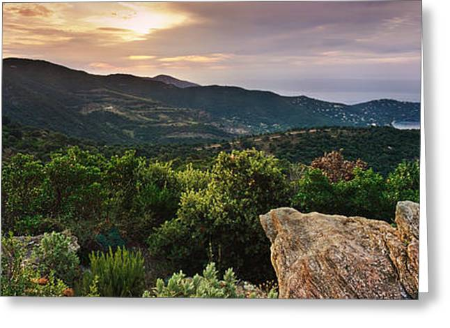 Azur Greeting Cards - Le Lavandou Greeting Card by Rod McLean