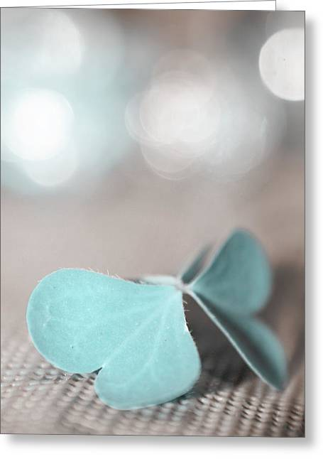 Still Life Photograph Greeting Cards - Le Papillon - The Butterfly - p05 Greeting Card by Variance Collections