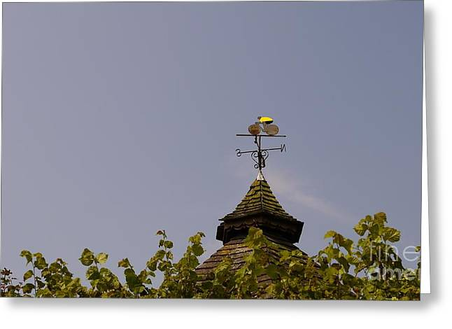Weathervane Greeting Cards - Le Tour Weather Vane Greeting Card by John Chatterley