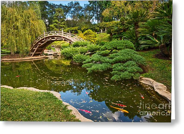 Stone Bridge Greeting Cards - Lead the Way - The beautiful Japanese Gardens at the Huntington Library with Koi swimming. Greeting Card by Jamie Pham