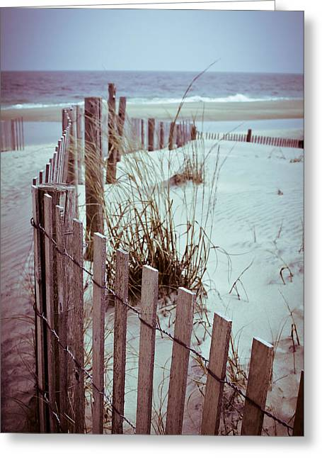 Print Photographs Greeting Cards - Lead The Way Greeting Card by Theresa Johnson