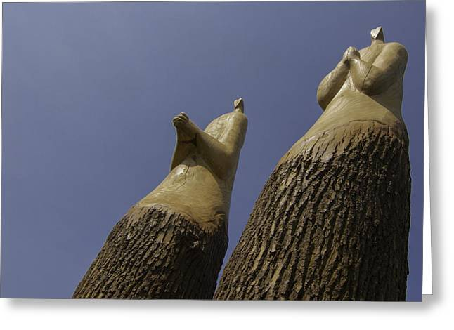 Praying Hands Greeting Cards - Lead With The Heart - Condemned Trees Greeting Card by Greg Thiemeyer