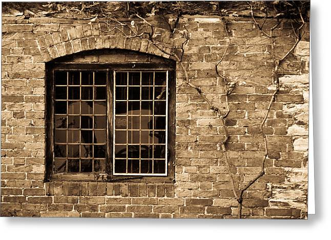 Lead Greeting Cards - Leaded Glass Window in Sepia Greeting Card by Douglas Barnett