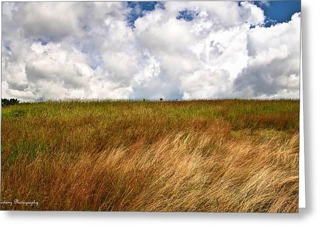 Leaden Clouds Over Field Greeting Card by Deborah Klubertanz