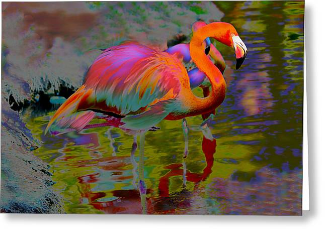 Modern Photographs Greeting Cards - Leader of the Pack 2 Greeting Card by Jeffrey Hamilton