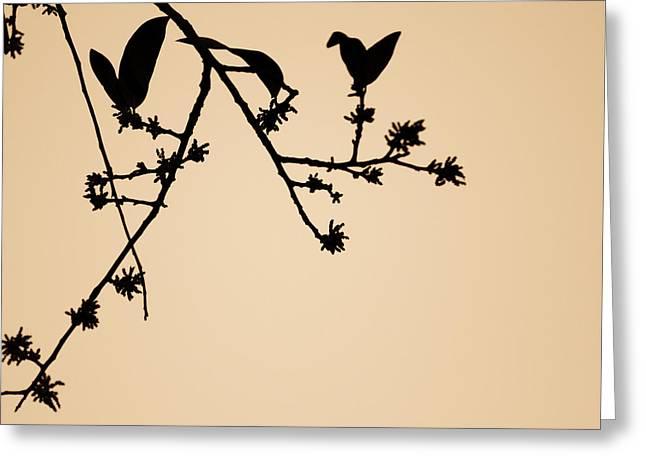 Beige Abstract Greeting Cards - Leaf Birds Greeting Card by Darryl Dalton