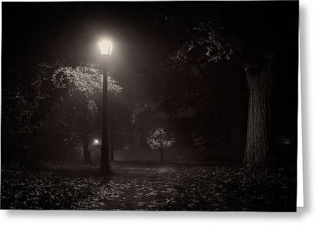 Mist Photographs Greeting Cards - Leaf covered path at night Greeting Card by Chris Bordeleau