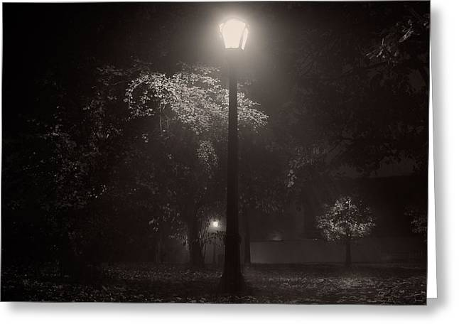 Misty Photographs Greeting Cards - Leaf covered path at night square Greeting Card by Chris Bordeleau