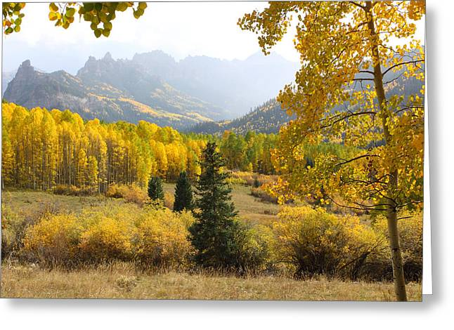West Fork Greeting Cards - Leaf Days Greeting Card by Eric Glaser