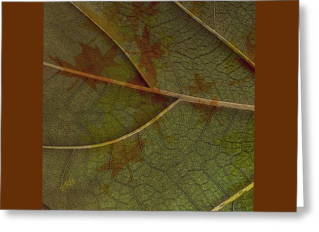 Earthtone Colored Art Greeting Cards - Leaf Design I Greeting Card by Ben and Raisa Gertsberg