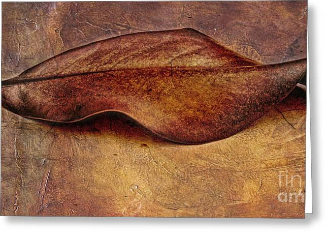 Composite Photo Greeting Cards - Leaf Greeting Card by Elena Nosyreva