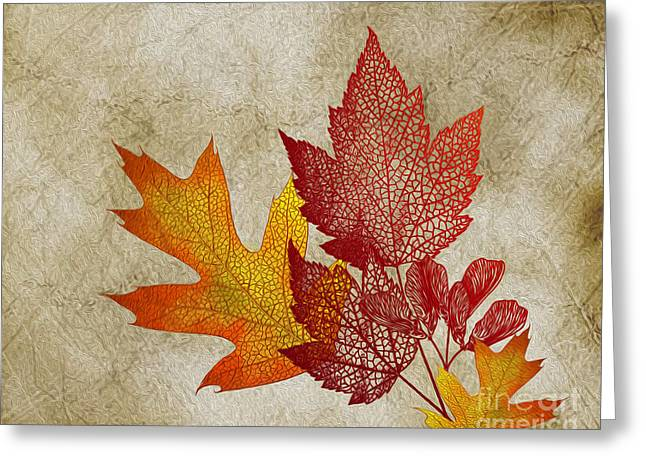 Reception Room Greeting Cards - Leaf impressions Greeting Card by Cheryl Young